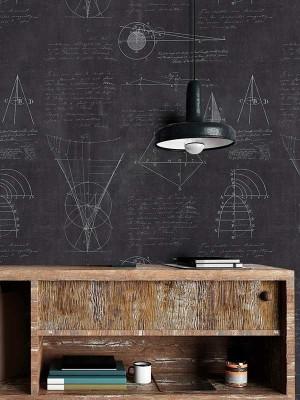 Newton Geometry