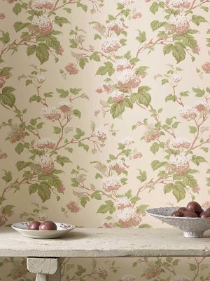 Colefax and Fowler - Tapet - Jardine - Chantilly